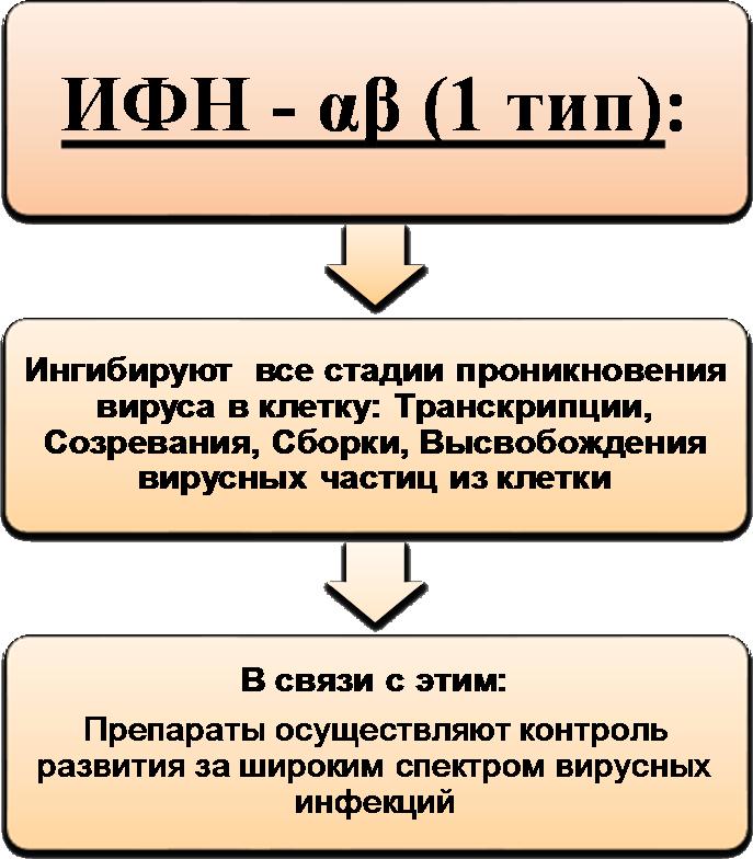 рекомбинантные (виферон