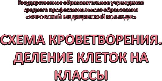 СХЕМА КРОВЕТВОРЕНИЯ.