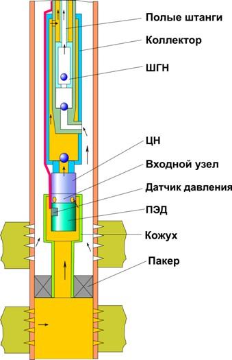 ЭЦН-ШГН пол