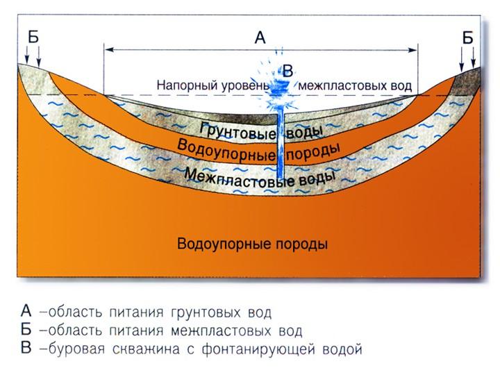 19-101169.jpg